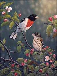 Toland Flag, Rose-Breasted Grosbeaks - House Flag