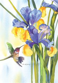 Hummingbird and Iris