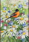 Baltimore Oriole and Daisies